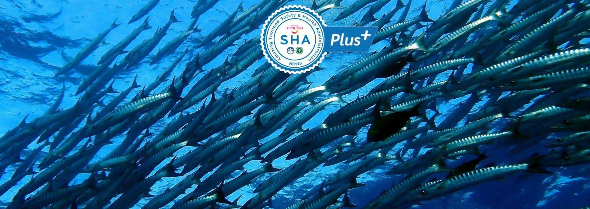 Aquasub S-28205